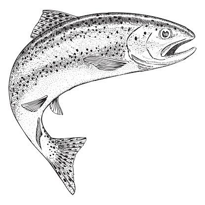 Harperrig Fishery Logo